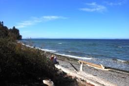 Semiahmoo beach